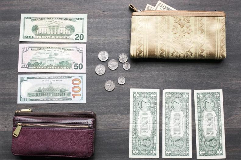 money-wallet-change-purse_925x.jpg